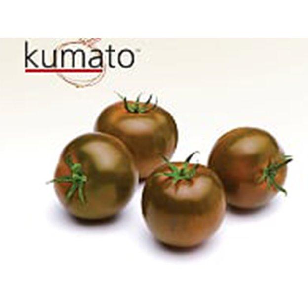 TOMATE KUMATO