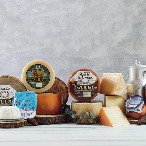 productos lacteos y quesos ovejero tienda online de quesos 1 scaled e1604402973356